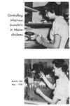 B584: Controlling Infectious Bronchitis in Maine Chickens by Harold L. Chute, David C. O'Meara, and J. Franklin Witter