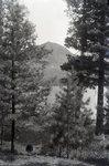 Mountain Scene by Bert Call