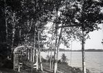Lake Wassookeag Path from W.L. Fray's Cottage by Bert Call
