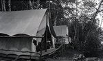 Tents in Woods (Untitled)