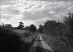 On Horne Hill Road by Bert Call