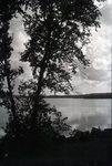 Elkinstown Point - Looking West by Bert Call
