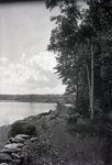 Wassookeag Lake (Shore Scene)