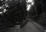 Forks of Road near Bingham by Bert Call
