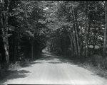 Road in Monson, Maine by Bert Call
