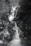 Falls in West Basin by Bert Call