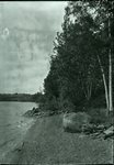 Wassookeag Shore and Elkinstown Point by Bert Call