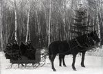 Group in Horse-Drawn Sleigh by Bert Call