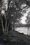 Wassookeag, October 20, 1945 by Bert Call