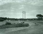 Newbridge, Dexter, September 27, 1949 by Bert Call