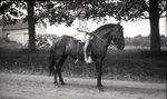 Girl on Horse by Bert Call