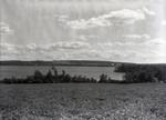 Dexter Lake