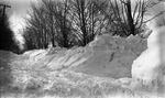 Dexter, Maine, Snow Scene