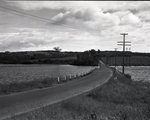 Bridge, Lake, Telephone Poles by Bert Call