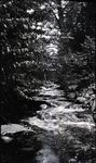 Katahdin Area?, Piscataquis County, Maine by Bert Call