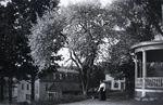 Maine Garden Scene by Bert Call