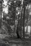 Rangeley Area Camp by Bert Call