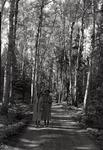 Rangeley Area, Women on a Walk by Bert Call