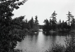 Yoke Pond by Bert Call