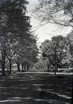 Garland Road by Jones Farm by Bert Call