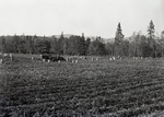 Maine Agriculture, Harvesting a Field by Bert Call