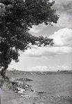 Lake Scene by Bert Call