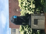 COVID-19 Images_Black Bear Statue with Mask by Matthew Revitt