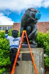 COVID-19 Images_Marketing & Communications_Black Bear Face Mask & Bananas by University of Maine Division of Marketing & Communications and Adam Kuykendall