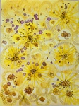 ART 460 - Coltsfoot and COVID by Cheryl Coffin