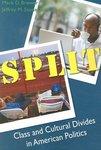 Split: Class and Cultural Divides in American Politics