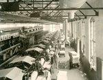 International Paper Company Photograph Albums, 20th Century