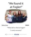 We Found it at Fogler - Delta Zeta