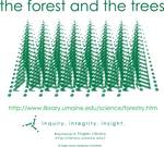The Forest and the Trees - Inquiry Integrity Insight by Jerry Lund and Brad Finch