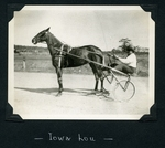 Iowa Lou by Guy Kendall