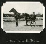 Diamond Q., Jr. by Guy Kendall