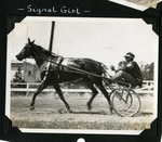 Signal Girl by Guy Kendall