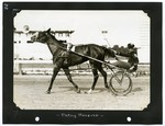 Patsy Hanover by Guy Kendall