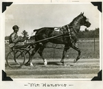 Mr. Hanover by Guy Kendall