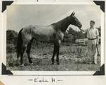 Eula H.