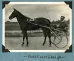 Gold Coast Gladys by Guy Kendall