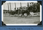 Maude Abbe wins by Guy Kendall
