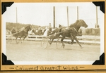 Calumet Amoret wins by Guy Kendall