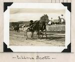Wilma Scott by Guy Kendall