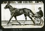 Alice Oakwood by Guy Kendall