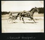 Calumet Bradford