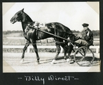 Billy Direct