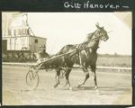 Gilt Hanover