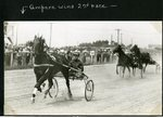 Ampere wins 2nd race by Guy Kendall