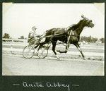 Anita Abbey by Guy Kendall