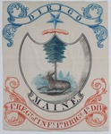 Maine Militia Flag: 4th Regiment of Infantry, 1st Brigade, 4th Division by Maine Adjutant General